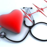 Семен  – переводчик, врач, эксперт в кардиологии