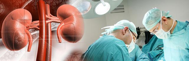 Лечение заболеваний простаты, мочекаменной болезни и недержания мочи в Германии