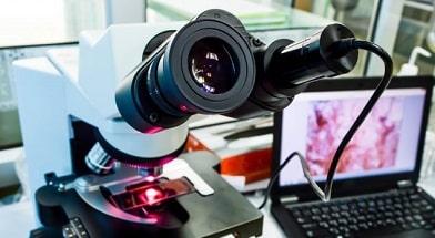 Биопсия: где сделать, как проводится, цена